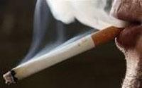 استعمال-دخانیات