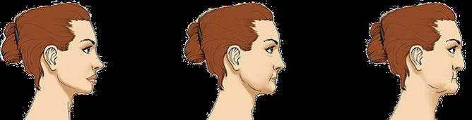 حفظ ساختارهای صورت